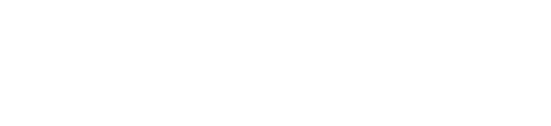 American Gymstars wordmark Logo White PNG